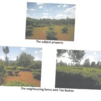 83. PRIME AGRICULTURAL/RESIDENTIAL PROPERTY IN KISII COUNTY. -KC