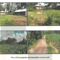 85. PRIME AGRICULTURAL PROPERTY IN KAKAMEGA COUNTY ON 5TH DECEMBER, 2019 OUTSIDE KCB BANK MUMIAS. KC