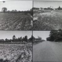 92. PRIME AGRICULTURAL IN KHAOYA AREA, BUNGOMA COUNTY. -KI