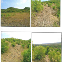 4. PRIME AGRICULTURAL/COMMERCIAL PROPERTY MBITA, HOMA BAY: -AUCTION DATE OPEN.