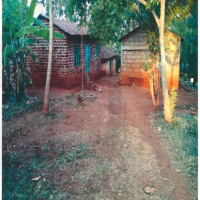 5. PRIME RESIDENTIAL PROPERTY SIAYA COUNTY.