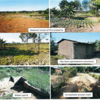 14. PRIME AGRICULTURAL PROPERTY BUNGOMA  COUNTY.